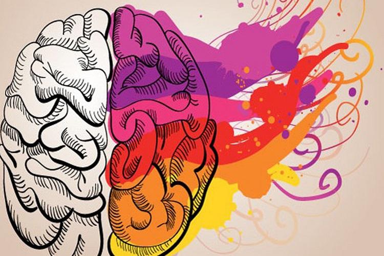 Två sidor av hjärnan